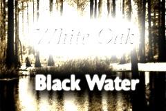 White Oak: Black Water
